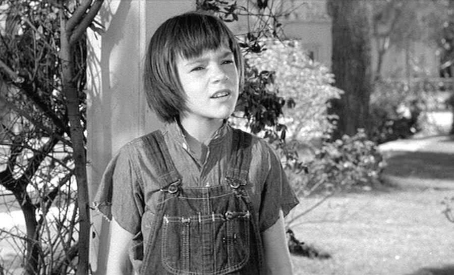 Zabić drozda (1962)