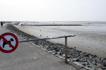 Plaża ze szlabanem, na którym jest zawieszony przekreślony symbol psa
